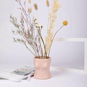 Boho Boobs/Chest Plant Vase Decor Minimalist Gift